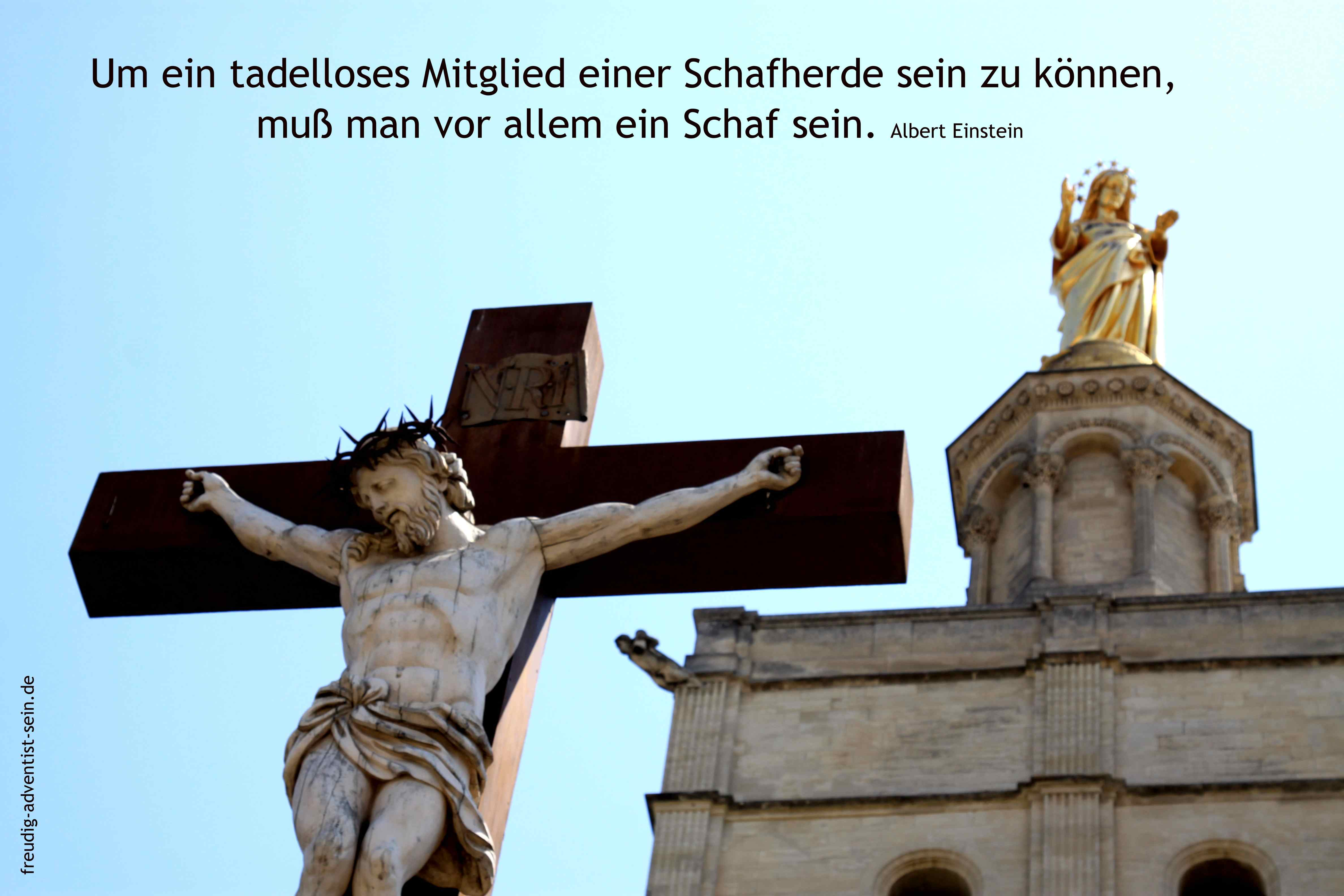 freudig-adventist-sein-15-44-small